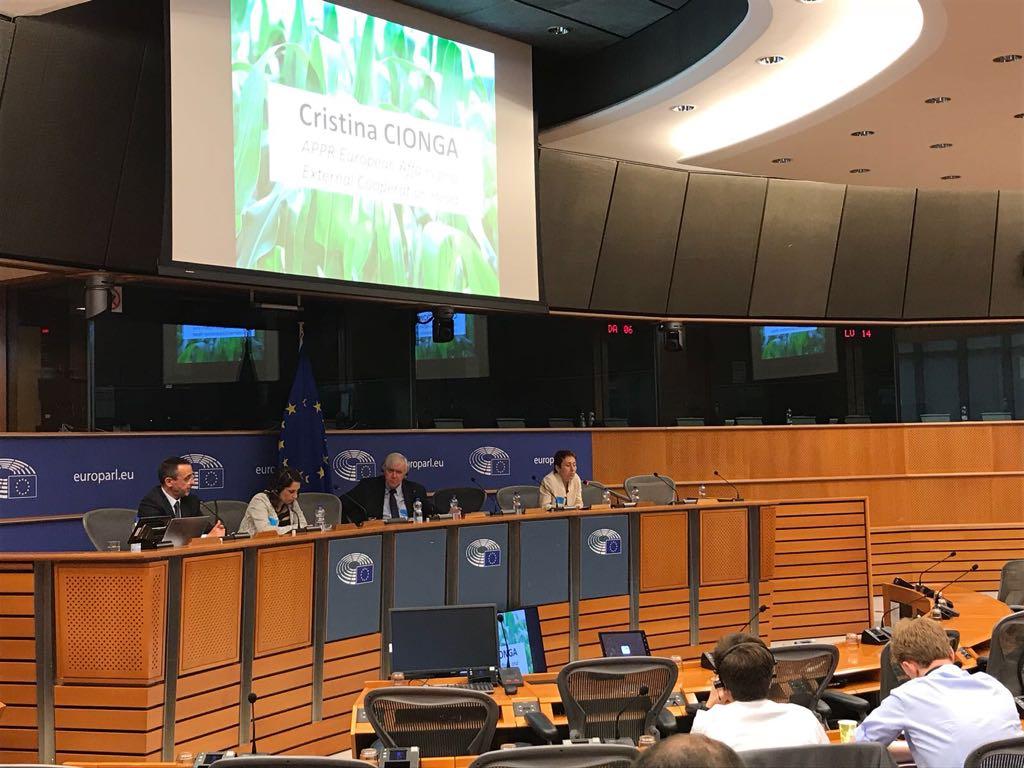 22 Mai 2018-Dezbatere in Parlamentul European