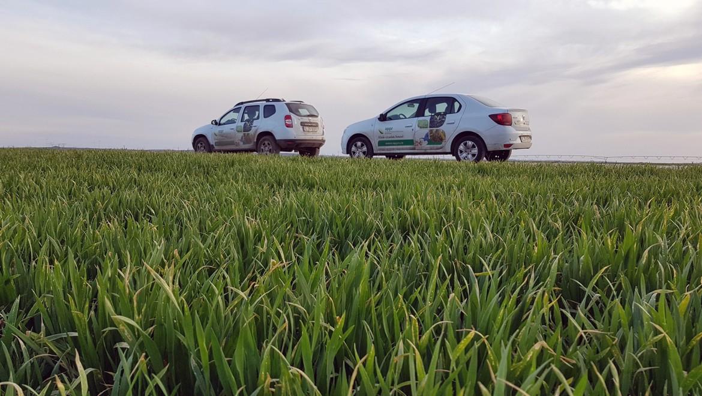 CP-Alianța pentru Agricultură și Cooperare solicită renunțarea la ordinul nr.182/2020