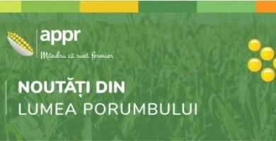 INFO PORUMB – SĂPTĂMÂNA 43.2020