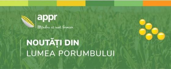 INFO PORUMB – SĂPTĂMÂNA 38.2020