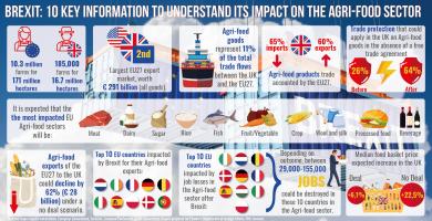 10 informatii cheie pentru a intelege impactul Brexitului in sectorul agro-alimentar